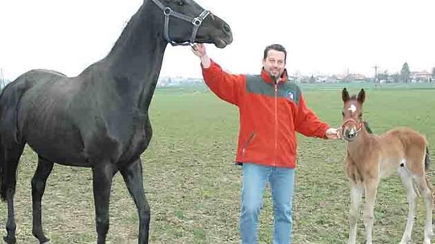 Lékař Petr Přikryl je specialistou na léčbu koní.