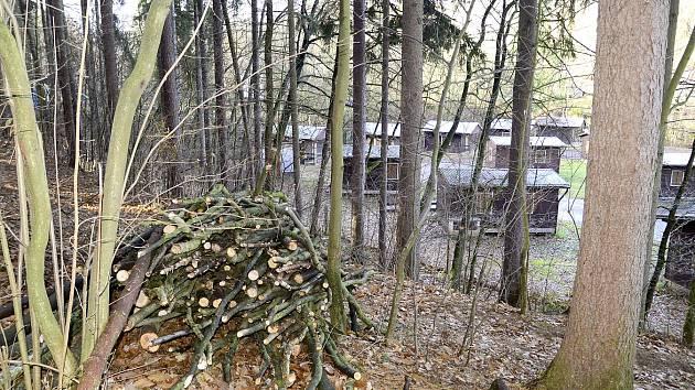 Lesy v okolí Konopáče