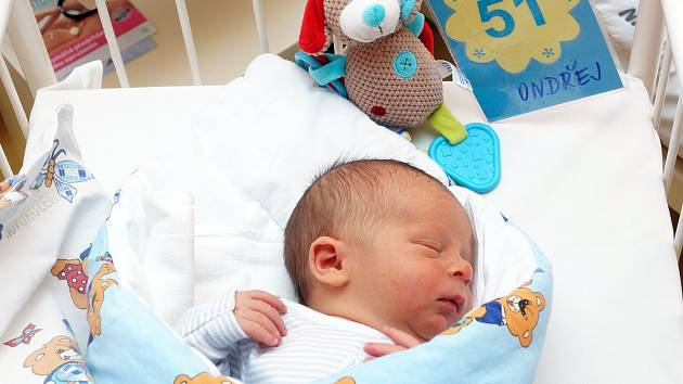 Za čtyřiadvacet hodin se o svátku zamilovaných 14. února 2014 narodilo v chrudimské porodnici jedenáct dětí.