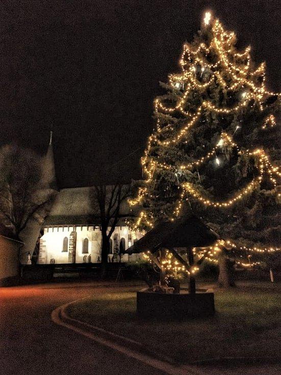 Vánoční strom v obci Kočí