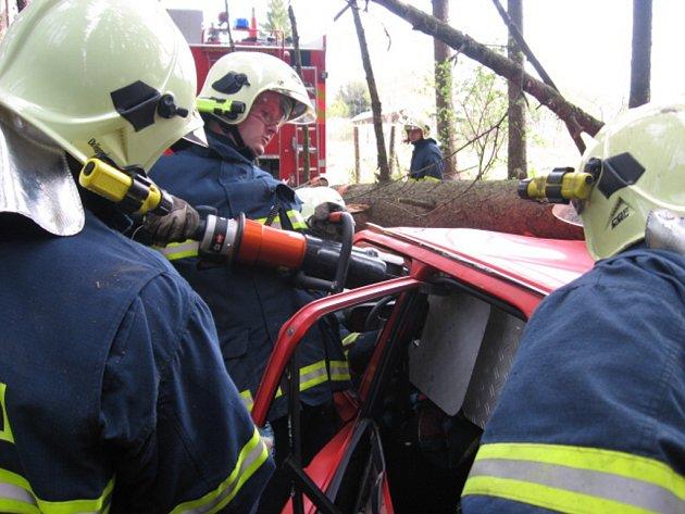 Hasiči trénovali vyprošťování osoby uvězněné v automobilu, na který spadl strom.