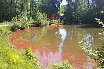 Insekticidy unikly do rybníku z převráceného vozíku