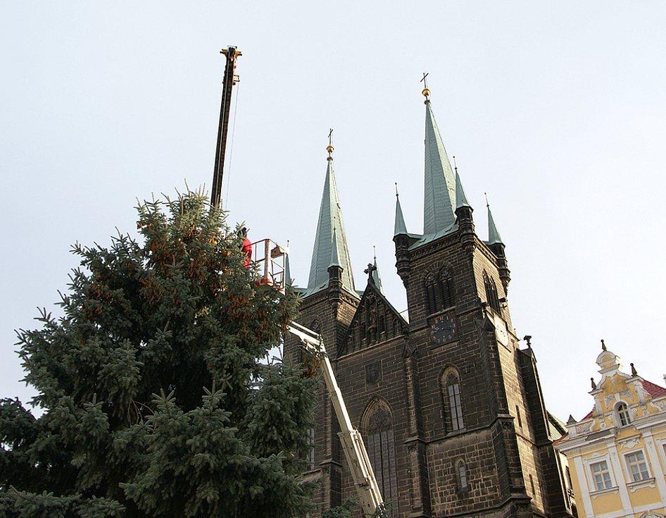 Resselovo náměsí už zdobí nový vánoční smrk