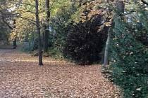 Chrudim získala zdarma pozemek v parku