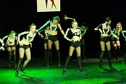 Tanečníci usilovali o pohár starosty.