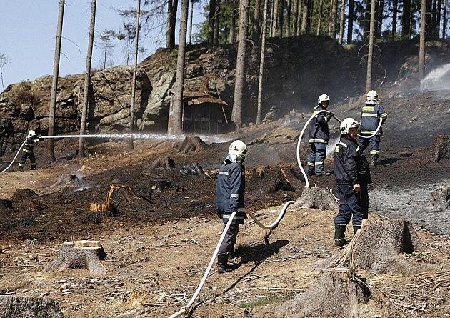 Hasiči likvidovali požár lesního porostu ve Studnicích.