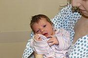 NATÁLIE POLÍVKOVÁ (3,16 kg a 50 cm) je od 19.2. od 7:42 po 2leté Sofince jméno dalšího miminka Terezy Holé z Morašic.