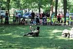 Bezpečné prázdniny v Městském parku v Chrudimi