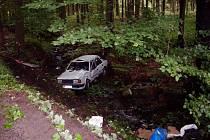 Pořádný šok utrpěla řidička, která skončila i se svým autem v Chlumětínském potoce, když v pátek odpoledne z nezjištěných příčin sjela ze silnice Krouna - Svratouch.