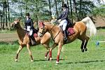 Na Jezdeckém dni v Kozojedech nechyběla přehlídka plemen koní, barokní jízda v kostýmech na dobovou hudbu, parkurové skákání a vozatajské parkury.