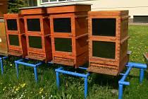 Termosolární úl se dokáže pomocí slunce vytopit na vysoké teploty.