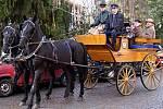 Kočár tažený párem starokladrubských vraníků se stal v pátek v Heřmanově Městci neobvyklým dopravním prostředkem ministra kultury Václava Jehličky.