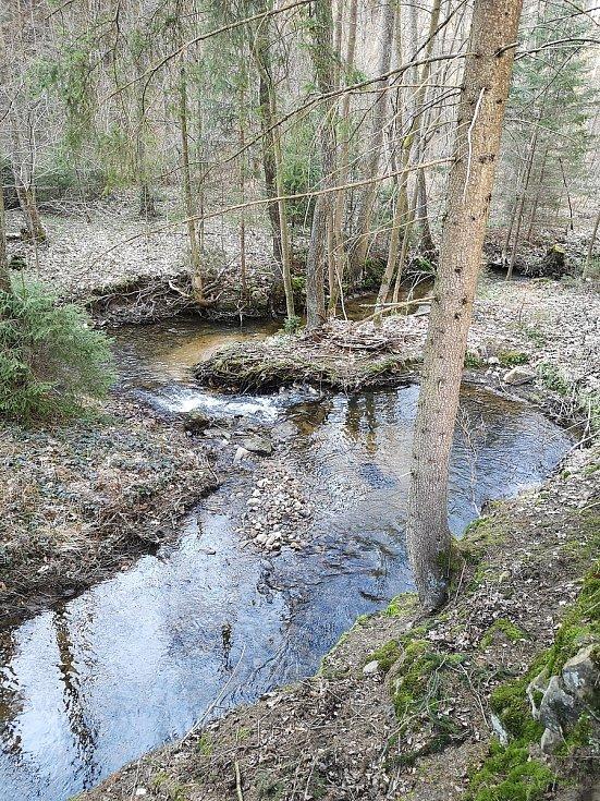 Trojmezí borské - pohled z ranické žluté stezky přes Novohradku z okresu Svitavy.