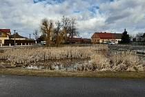 Rybník ve Vlčnově bude revitalizován.
