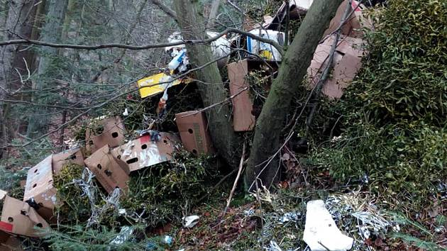 Les u Zbyhněvic hyzdila hromada odpadu