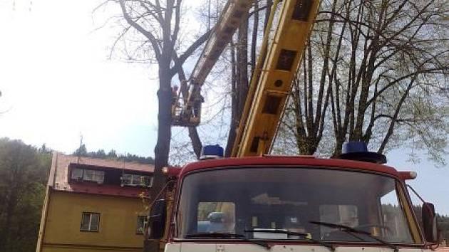 Suché a větrné počasí zaměstnávalo hasiče i začátkem týdne.