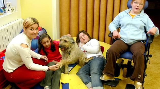 Canisterapie pomáhá i dětem ze speciální školy.