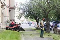 Technické služby zajišťují i chemické hubení plevele
