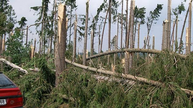 Silná vichřice v roce 2008 zničila porosty představující objem 360 tisíc m³ zpracovaného dřeva.