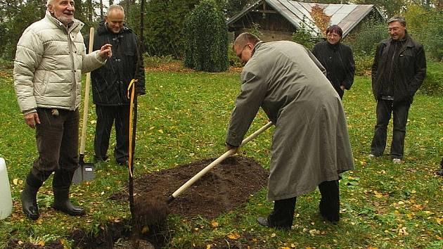 VI. podzimní zavírání Hamzova parku a arboreta při příležitosti Dne stromů a dřeva.