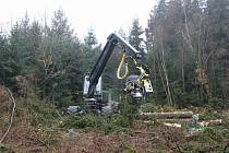 Harvestor a vyvážecí souprava při pracích v lesích na Podhůře.