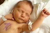 DOMINIK MARTINEC se narodil 3. července v 16:30 rodičům Šárce a Adamovi z Chrudimi. Maminku na sále u porodu kloučka s váhou 3,95 kilogramu a mírou 53 centimetrů podpořila babička Milena.