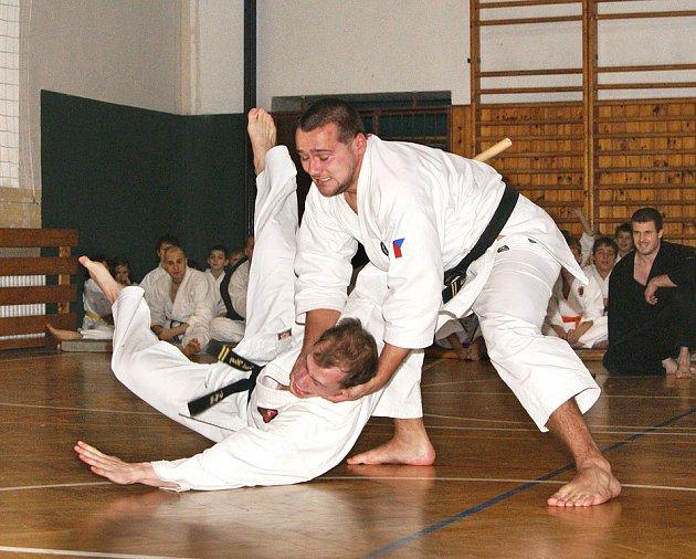 Vánoční exhibice v karate.