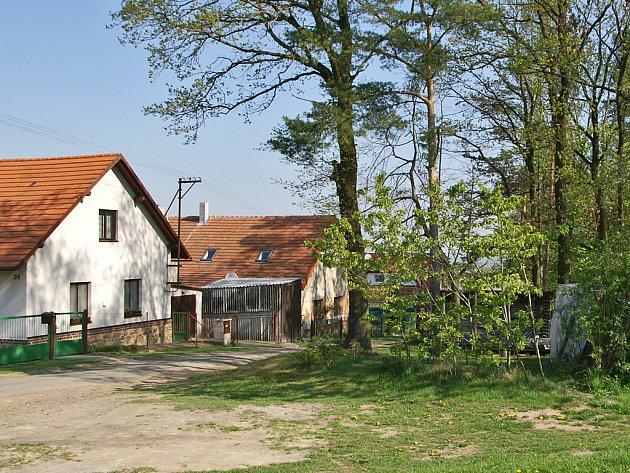 """""""Lesní skladiště"""" na okraji obce Čejkovice."""