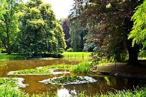 Zámecká zahrada ve Slatiňanech je kouzelná v každém ročním období, tedy i v létě.
