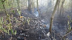Požár kompostu v obci Mladotice.