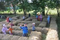Dnes mají děti na zahradě i labyrint z proutků.