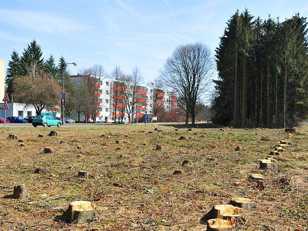 Pařezy na místě budoucího stanoviště záchranky.