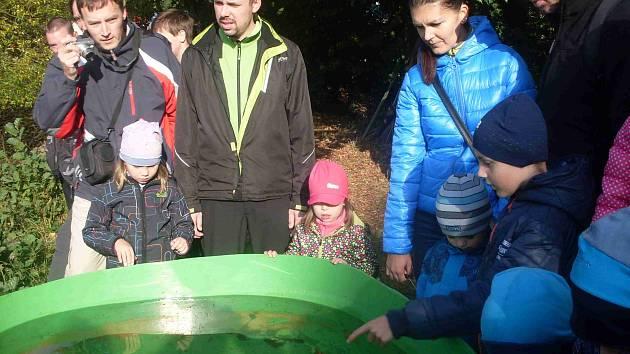 Výlov rybníku v Loučkách