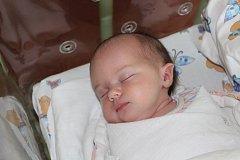 EVELÍNA ŽEŽULOVÁ (3,88 kg) – toto jméno vybrali 16.3. v 11:05 pro svou prvorozenou dceru Hana a Jan Žežulovi z Chrudimi.