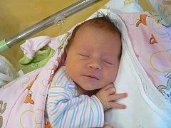 STELLA HURDÁLKOVÁ (3,26 kg a 50 cm) udělala radost 27.12. v 5:48 nejen rodičům Michaele a Martinovi z Duban, ale také 3leté sestřičce Berenice.