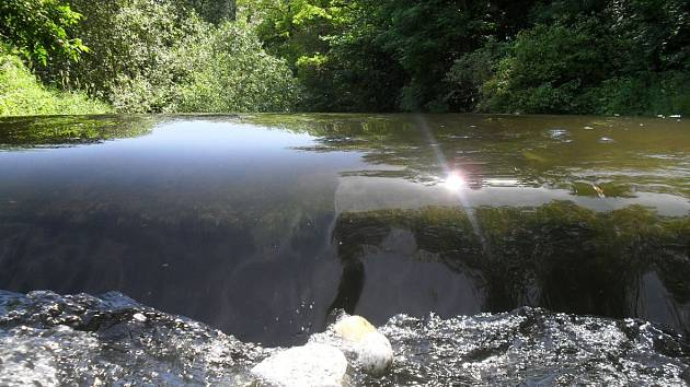 Cesta z Chrudimi do Pardubic podél řeky Chrudimky.