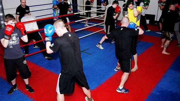 Boxerský klub v Chrudimi se úspěšně rozvíjí