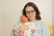 HONZÍK BAŤA (3,9 kg a 51 cm) se narodil  12.1. v 16:18 Renatě a Jiřímu ze Štěpánova. Doma se na něj těší sestřička Nikolka, které které jsou 4 roky.