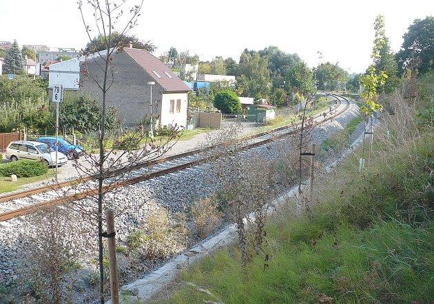 Uschlé stromy u železnice