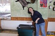 Volby se uskutečnily také v jednom z nejmenších okrsků v Chrudimi, Vestci.