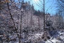 Asi poslední letošní sníh ve Vyžicích, vyfoceno během prvního březnového víkendu.