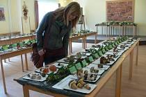Na mykologické výstavě ve Společenském domě ve Slatiňanech se představilo 180 druhů jedlých i nejedlých hub.