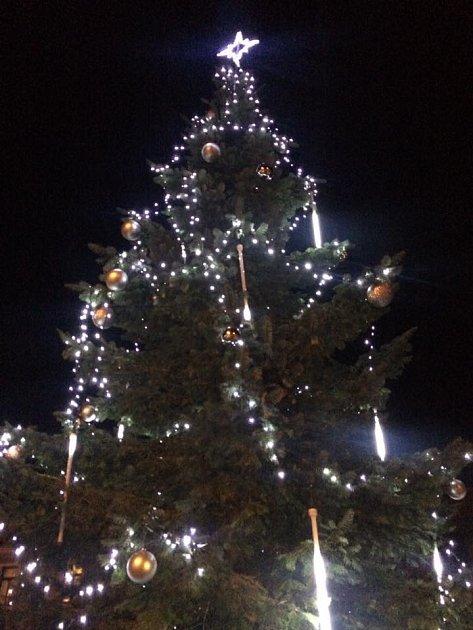 Vánoční strom vLuži