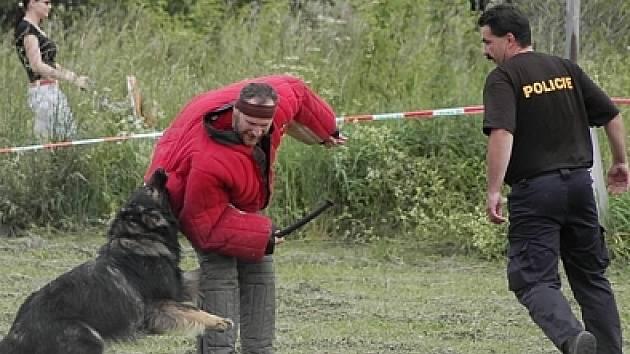 Ukázky práce policejních psovodů.