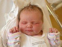 LEA SAPIETOVÁ (3,33 kg a 49 cm) patří od 9.9. od 2:37 do rodiny Michaely a Radka zRosic u Chrasti a jejich 3leté Lilly.