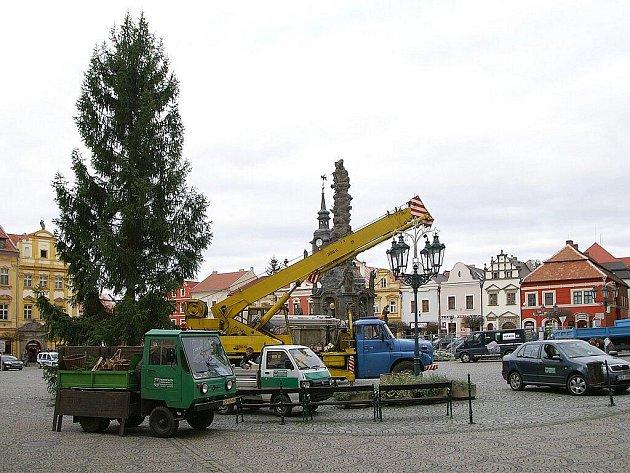 Chrudimské centrum zdobí vánoční smrk