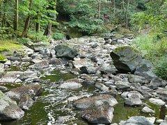 V korytu řeky Doubravy je více kamení než vody.