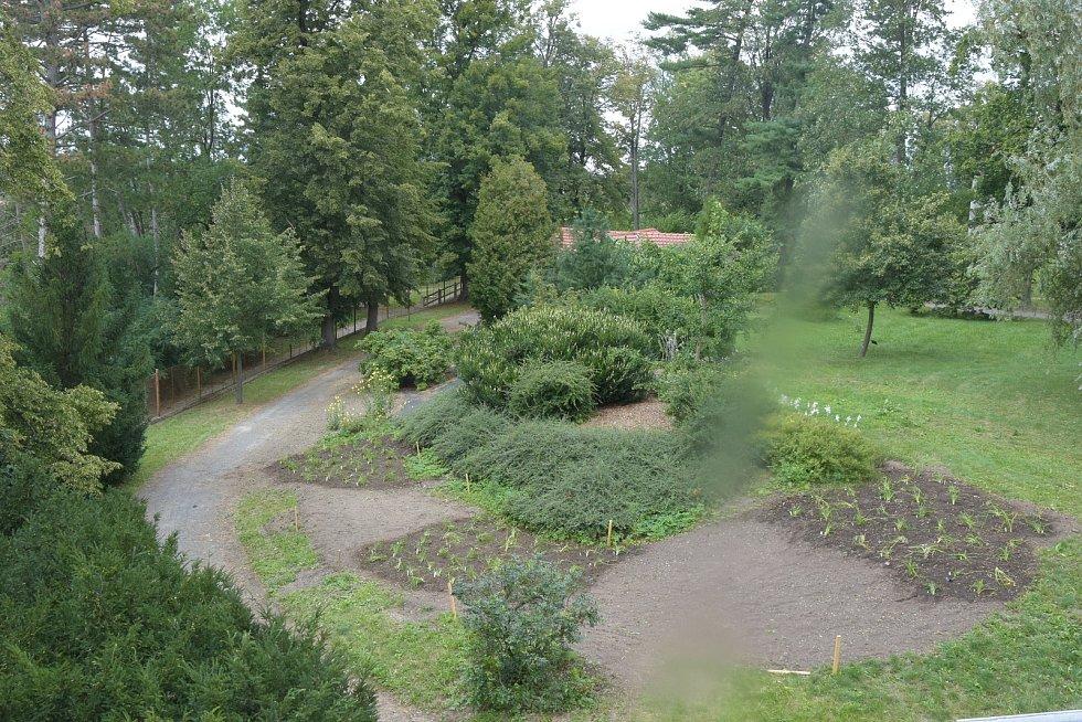 Hamzův park obohatila kolekce denivek