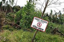 Do chrudimských lesů se nesmí, škody po vichřici jsou odhadovány na 450 tisíc korun.