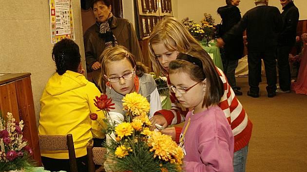 Jednadvacátý ročník výstavy chryzantém v Hlinsku představil v prostorách Orlovny veřejnosti květiny ve vázách a květináčích, celkem pořadatelé dali dohromady dvě stovky exponátů.